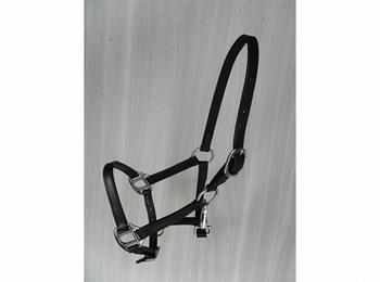 Lederen halster volwassen minipaard met clip